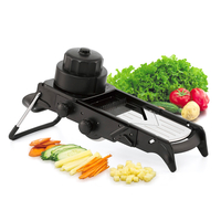 All In One Mandolin Vegetable Slicer