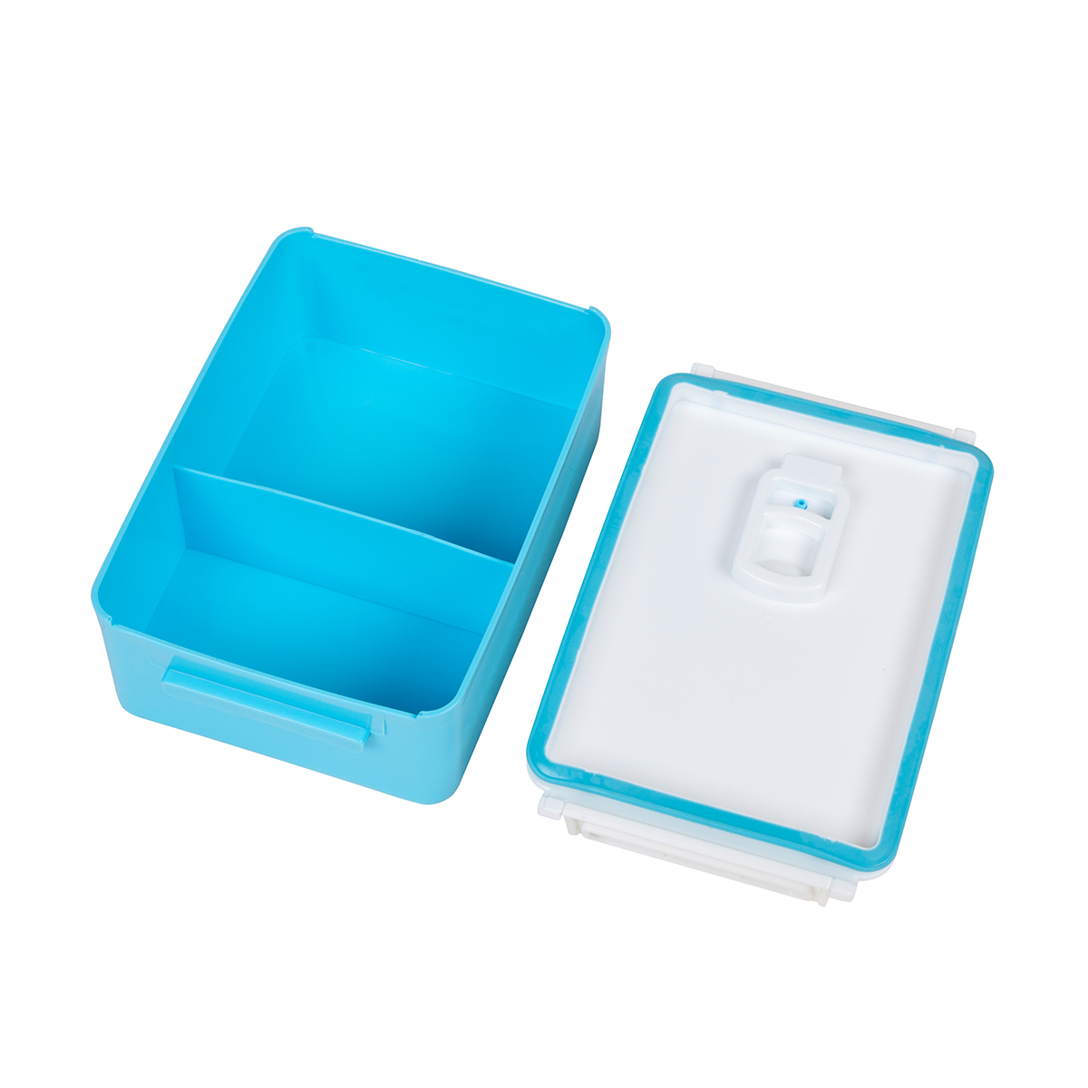 Portable BPA Free Bento Box with Water Bottle
